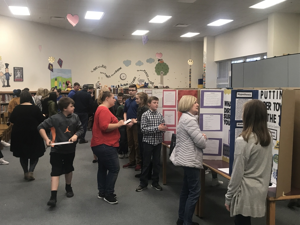 Wolf Ridge Science Fair